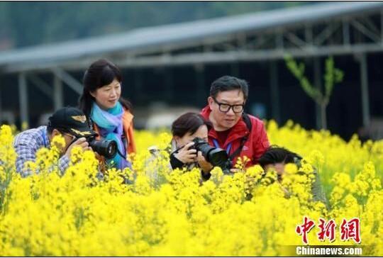 海外华媒踏访春日广元 领略城市绿色生态康养魅力